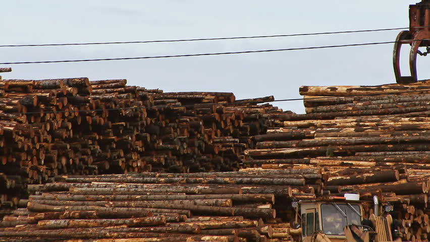 TACOMA, WA - CIRCA 2012: Quick zoom out from log deck and grapple to street