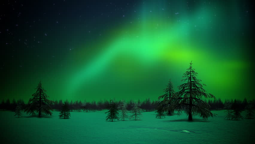 Polar lights in forest loop #3154393