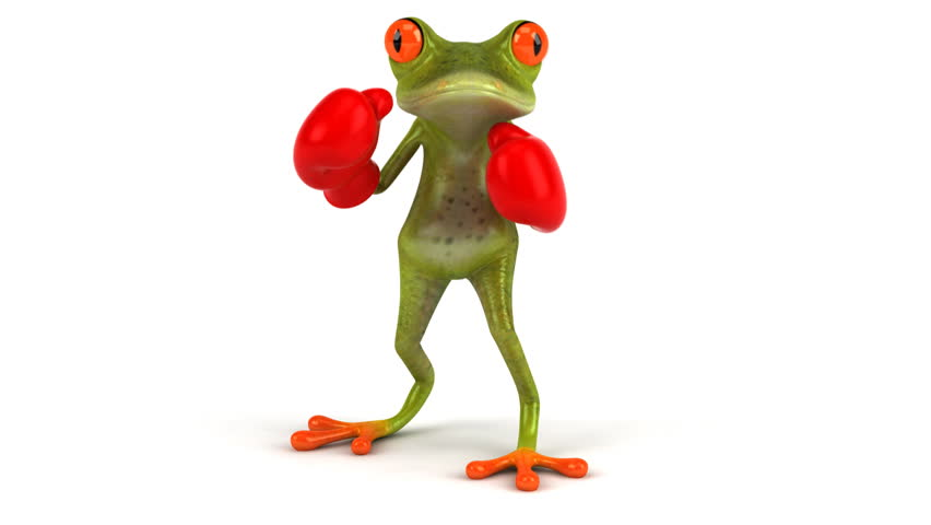 Fun frog with boxing gloves - HD stock footage clip