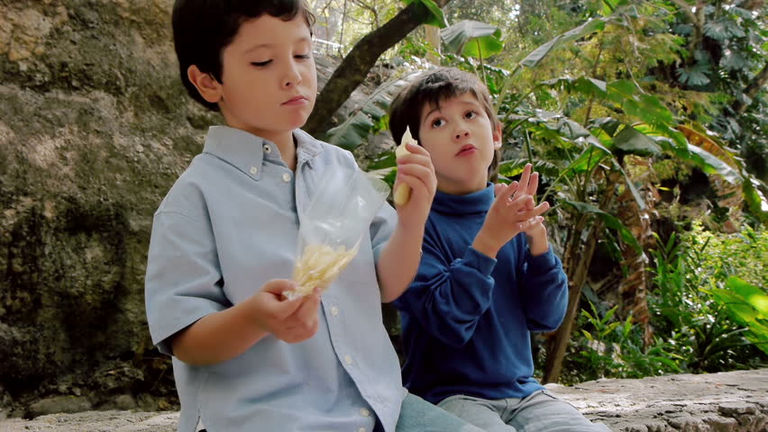 Boys Share Potato Chips From Bag. Hispanic Kids are Brothers. - HD stock footage clip