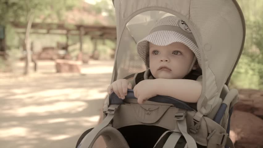 A baby sitting in a carrier at Zion National Park - HD stock video clip