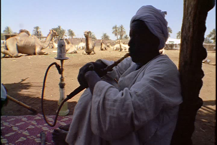 EGYPT - APRIL 25, 1999: Scenes of daily life in a Nubian village; MS Nubian man smoking hookah in the shade. In the background camels are resting in a sunny dirt lot. - SD stock footage clip