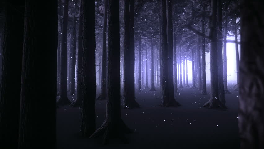 Strolling through the trunks of a forest of trees and snowy night