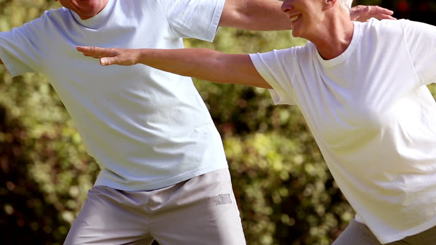 Mature couple practicing tai chi in a park - HD stock video clip