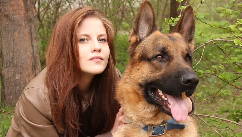 Caucasian Shepherd Dog Angry