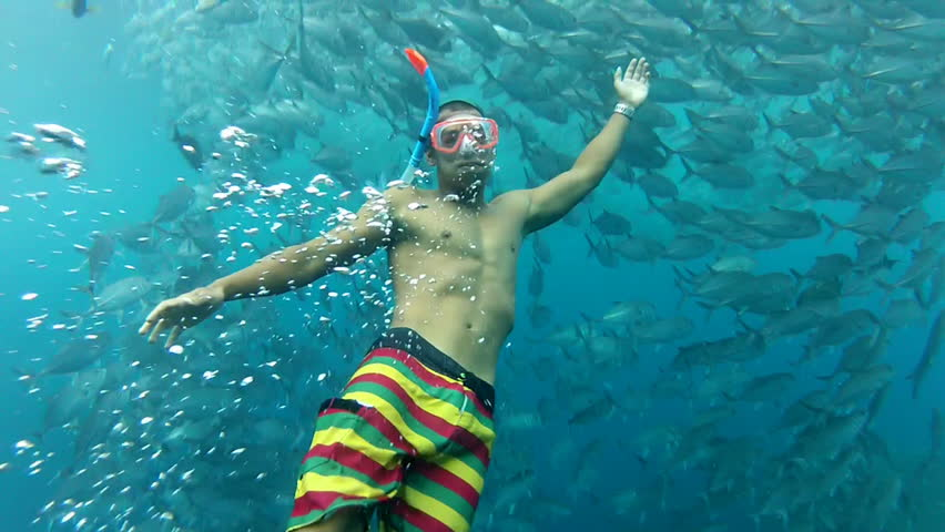 Person swimming among shoal of jack fish in tulemben in Bali, Indonesia - HD stock video clip