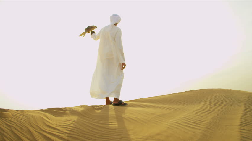 Trained bird of prey perching on the gloved wrist of its Arabic male owner standing desert sand dunes shot on RED EPIC
