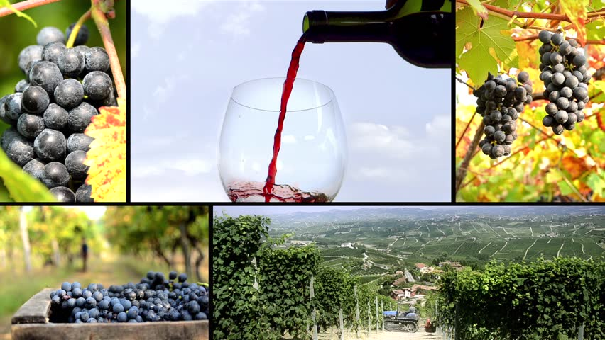 land of wine, collage