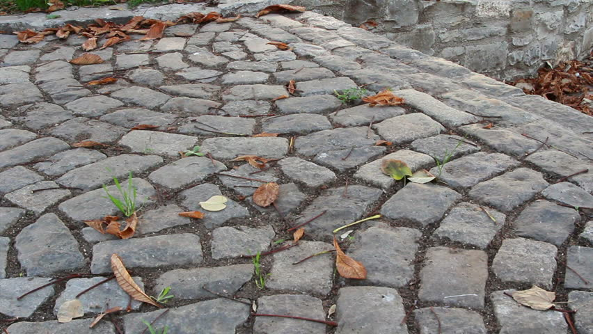 Stone steps in city alley covered by dead fallen leaves