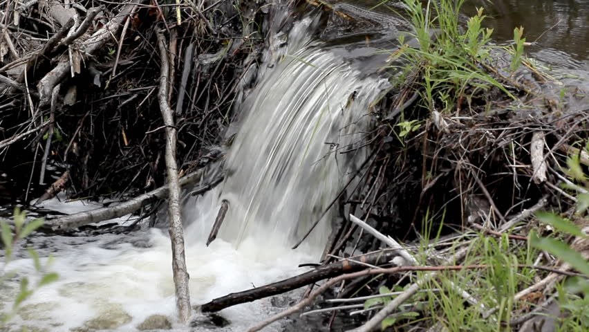 Water pouring in a small lake - HD stock video clip