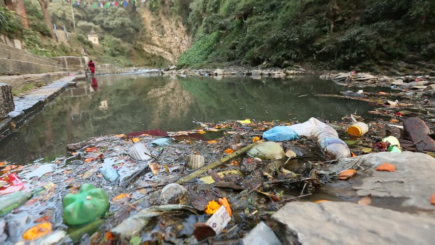 effect of domestic sewage pollution Marine pollution: human and domestic wastes  the effect of untreated sewage  on salinity is nill, apart from those places where a lot of fresh water is pumped.