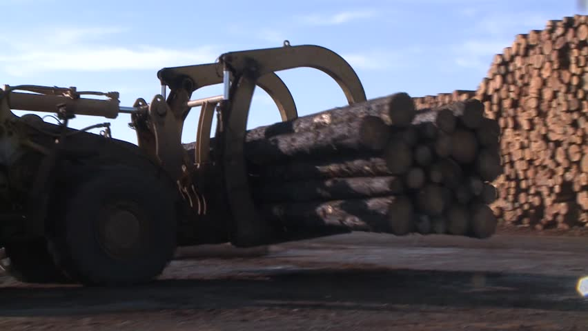 LOG PICKER DOZER AT LUMBER MILL LOGGING TRACTOR AND TREES WITH HEAVY EQUIPMENT HD HIGH DEFINITION STOCK VIDEO FOOTAGE 1080 1920X1080 - HD stock video clip