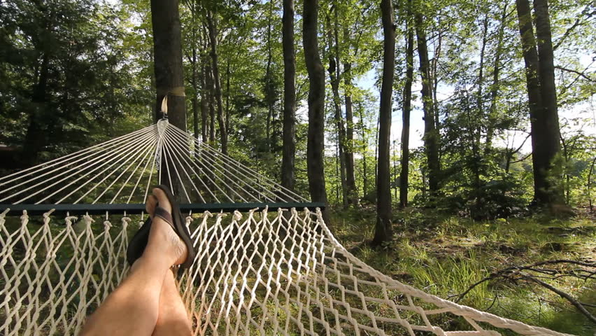 Summer Hammock.