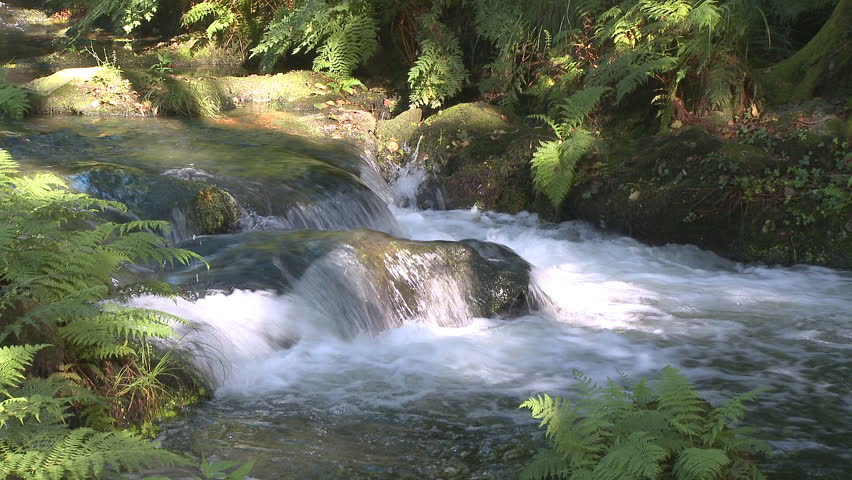 Pure fresh water waterfall in forest - HD stock footage clip