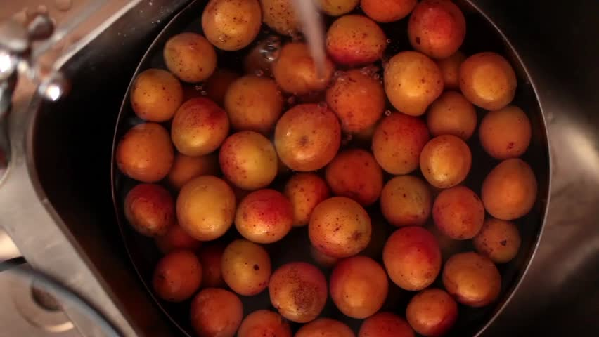 Washing Apricots - Overhead video of hand washing apricots. Video contains sound.