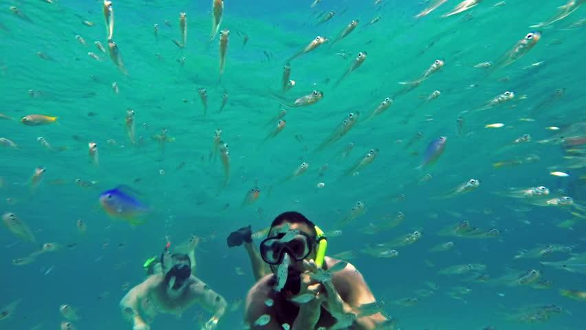 Two Men diving in coral reef. Underwater scene. | Shutterstock HD Video #7055596