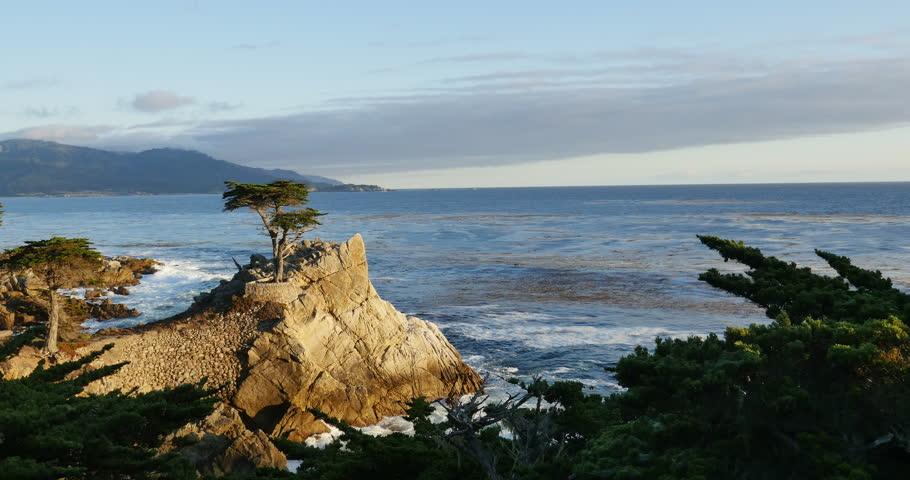 Lone Cypress 01 Sunset Ocean 17 Miles Drive Monterey California - 4K stock video clip