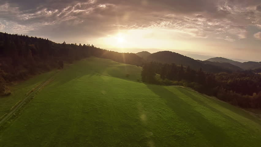 Forest with sun aerial footage | Shutterstock HD Video #7248268