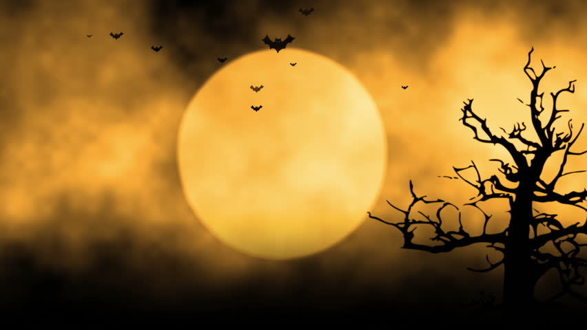 Flying bats in the light of spooky moon loop stock - Scary animated backgrounds ...