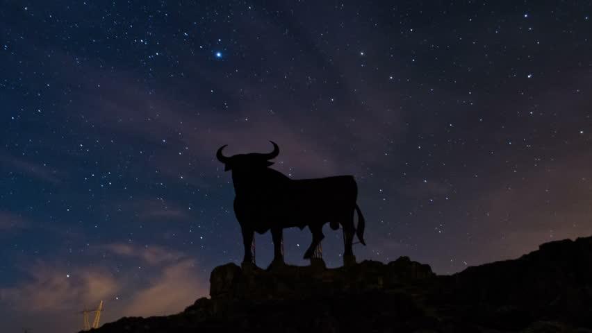 Night Sky Star Timelapse and Black Bull in Leon, Spain.   Shutterstock HD Video #7323373