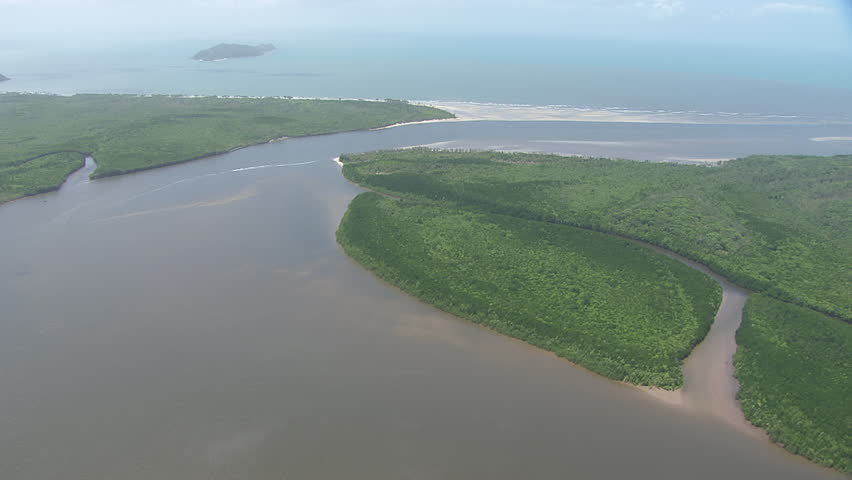 Aerial view of forested coast in Daintree National Park - HD stock footage clip
