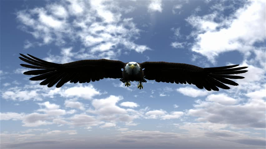 Landing Eagle With Mountains Sky And Sun Stock Footage