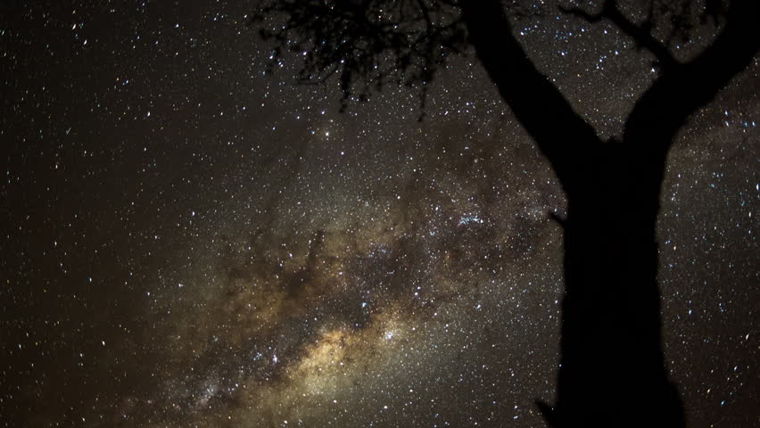 A static holy grail day to night transition timelapse at sunset, framed with an acacia tree in the foreground while the focus pull to the night sky stars with lots of meteorites  and the Milky Way. 4K - 4K stock footage clip