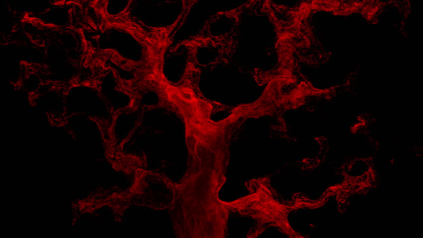 Abstract red blood cells isolated on black background.