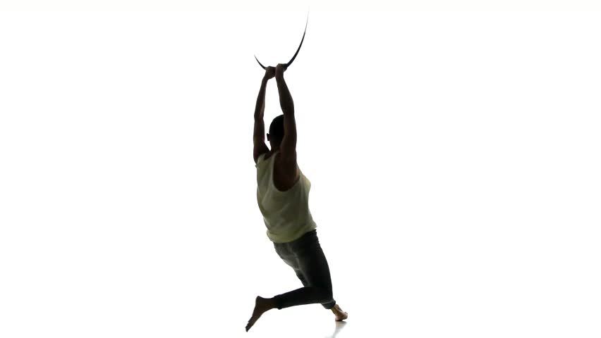 Header of acrobat