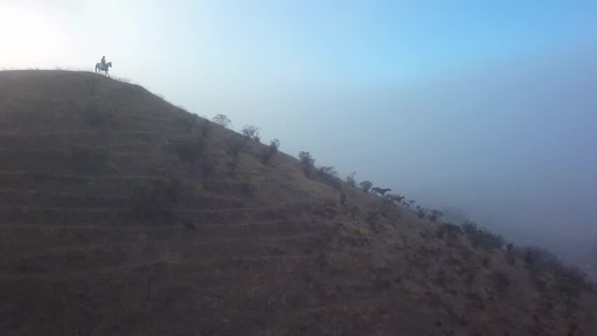 Cowboy on Horseback in the Sunrise Fog Slow Motion - HD stock video clip