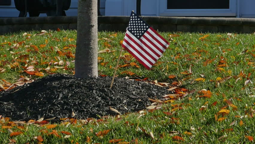 American Flag in Font Yard  - HD stock footage clip