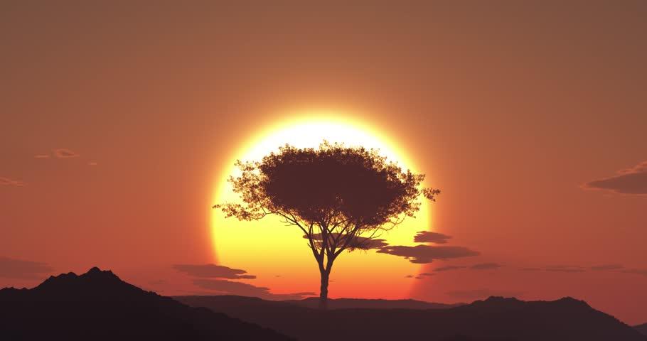 4K - Desert sunrise | Shutterstock HD Video #8096716