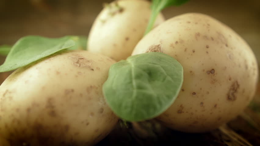 Rustic potato background HD stock footage. An elegant rustic potato background with a farm house feel and a dolly camera move. ProRes 422