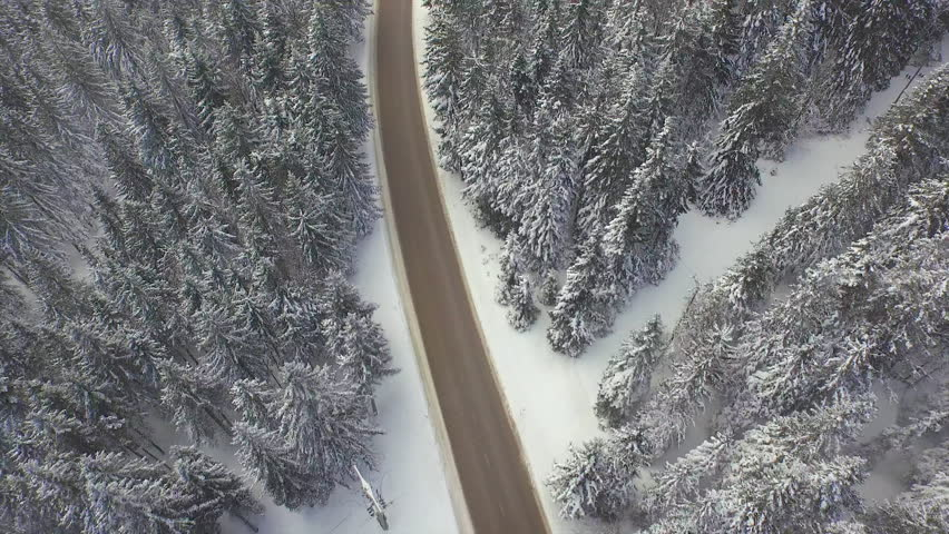 AERIAL: Empty road through snowy forest | Shutterstock HD Video #8776441