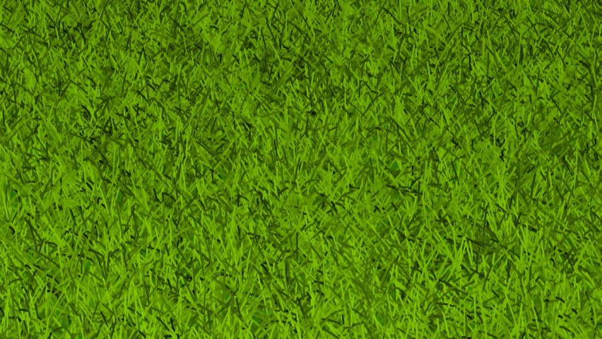 animated grass Cartoon Starfish Starfish Outline