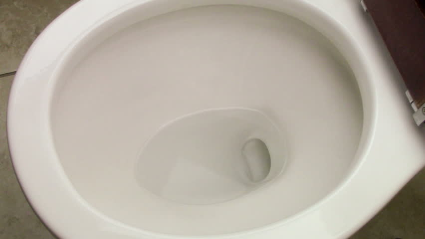 Cell phone accidentally dropped into a toilet bowl. According to a study by online address-book site Plaxo, 1 out of five people dropped their smartphones into the toilet bowl.